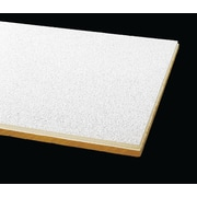 Armstrong Optima Square Tegular 2'x2' White Ceiling Tile, 24 Count (3250E)