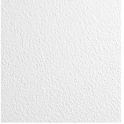 Armstrong Kitchen Zone Square Lay In 2'x4' White Ceiling Tile, Pack of 12 (672)