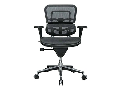 Raynor Low Back Mesh Task Chair, Black (ME8ERGLO(N))