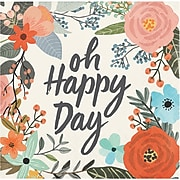 Brush Strokes Happy Day Beverage Napkins by Elise, 48 Count