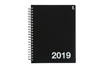graphic about Large Daily Planner identify 2019 Staples 11\