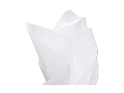 Bags & Bows Tissue Paper, White, 480/Pack (11-01-9M)