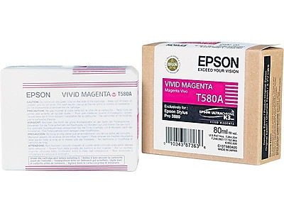 Epson T580 Ink Cartridge, Standard (T580A00)