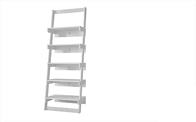 Accentuations by Manhattan Comfort 5 Shelf, 69.69' H Ladder Shelves in White 2429409