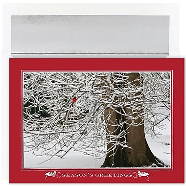 JAM Paper® Christmas Card Set, Winter Cardinal Holiday Cards, 16/pack