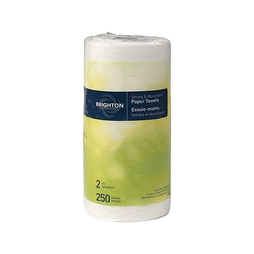 Brighton Professional Kitchen Rolls Paper Towels 2 Ply 250 Sheets Roll 12 Rolls Carton Bpr 21806