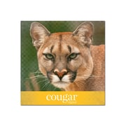 "Domtar Cougar Digital 10% Recycled 11"" x 17"" Cover Paper, 80 lbs., 98 Brightness, 250/Ream (2868)"