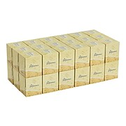 Preference Standard Facial Tissue, 2-Ply, 100 Sheets/Box, 36 Boxes/Pack (46200)