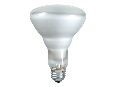 Philips 65 Watts Frosted Incandescent Bulb, 12/Carton (248765)