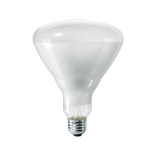 Philips 65 Watts Clear Incandescent Bulb, 12/Carton (140087)