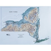Hubbard Scientific Raised Relief Map New York State Map (Amed1942)