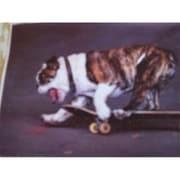 Fine Crafts Skateboarding Bulldog Jigsaw Puzzle (Fncrf109)