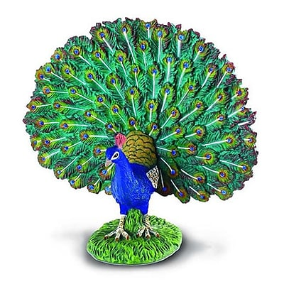 Collecta Peacock - Realistic International Wildlife Bird Replica - Pack Of 6 (Iqon089) 2491240