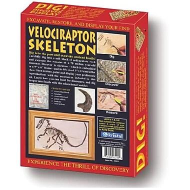 Kristal Dig! And Discover - Velociraptor Skeleton (Ede400)