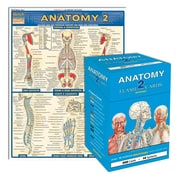 QuickStudy Anatomy 2 Flashcard & Reference Set, 2nd Edition (2498000)