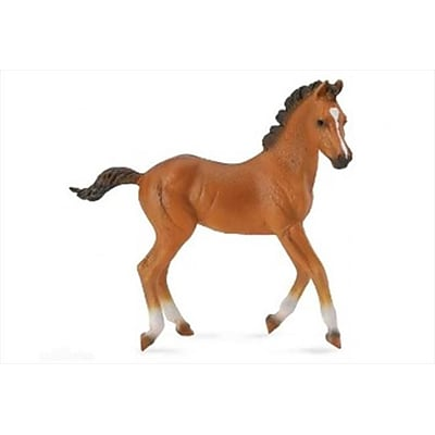 CollectA Bay Quarter Horse Foal Model Toy Figurine - Pack of 6 (IQON281) 2516625