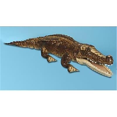 Sunny Toys 30 In. Crocodile - Sandy,
