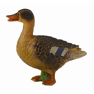 CollectA Mallard Duck Hen - Realistic Wildlife Toy Bird Model Figurine - Pack of 6 (IQON171) 2516206