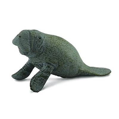 CollectA Manatee Calf Sitting - Realistic Sea Life Marine Mammal Toy Replica - Pack of 12 (IQON204) 2516539