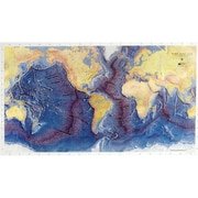 American Educational Ocean Floor Map (AMED3431)