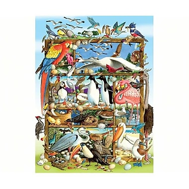 Outset Media Games Birds of the World Family 400 piece Puzzle (GC20852)