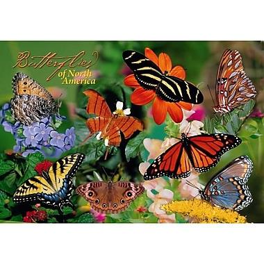 Impact Photographics Kids Puzzle Butterflies (GC9140)