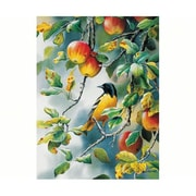 Outset Media Games Northern Oriole 500 piece Puzzle (GC20844)