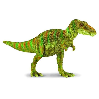 CollectA Tarbosaurus Prehistoric Dinosaur Procon Toy Model Dino - Pack of 6 (IQON144) 2512440