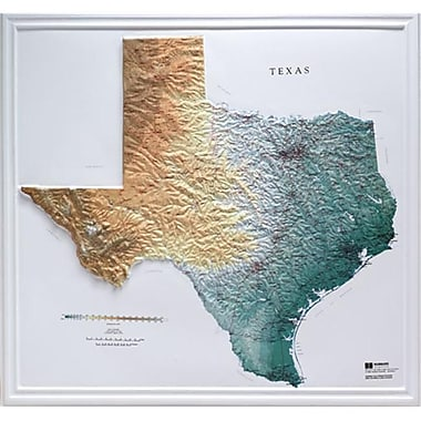 Hubbard Scientific Raised Relief Map Texas State Map (AMED1974)