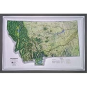 Hubbard Scientific Raised Relief Map Montana NCR Series (AMED1933)