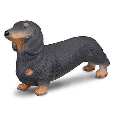 CollectA Dachshund Replica Black German Weiner Dog Figurine Toy - Pack of 6 (IQON074) 2516772