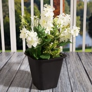 Pure Garden Plastic Flower Pot - 6 x 6 Inch Black (886511977938)
