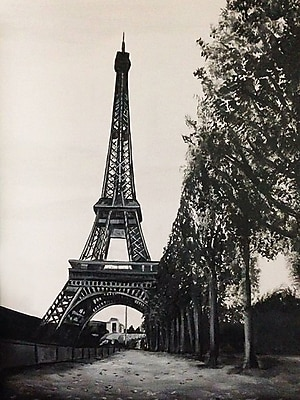 Diamond Decor Wall Art Paris in the Park 24 x 32 in. (EDC077CL)