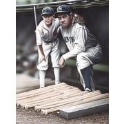 Diamond Decor Wall Art Babe Ruth and the Bat Boy Artwork  18 x 24 in. (DV2007CM)