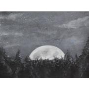 Diamond Decor Wall Art Starry Night Over the Moon 24 x 32 in. (EDC056CL)