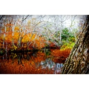 Diamond Decor Wall Art Fall Pond Colors 3- 16 x 24 in. (JW1005CM)