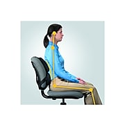 Fellowes Professional Back Support, Black (8037601)