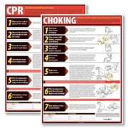 graphic relating to Free Printable Choking Poster referred to as ComplyRight CPR Choking Poster Package deal (W0855)