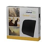 Tempur-Pedic Cushion, Black (TPLUM-BLK)