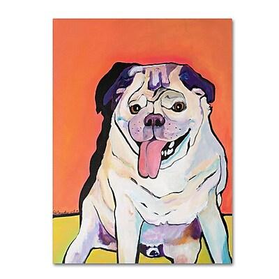 Trademark Fine Art Pat Saunders-White 'Conan' 14