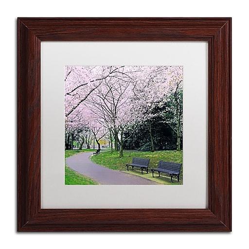 "Trademark Fine Art CATeyes 'Spring Path' 11"" x 11"" Matted Framed (190836099238)"