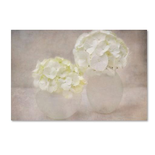 "Trademark Fine Art Cora Niele 'White Hortensia Still Life' 22"" x 32"" Canvas Stretched (190836260942)"