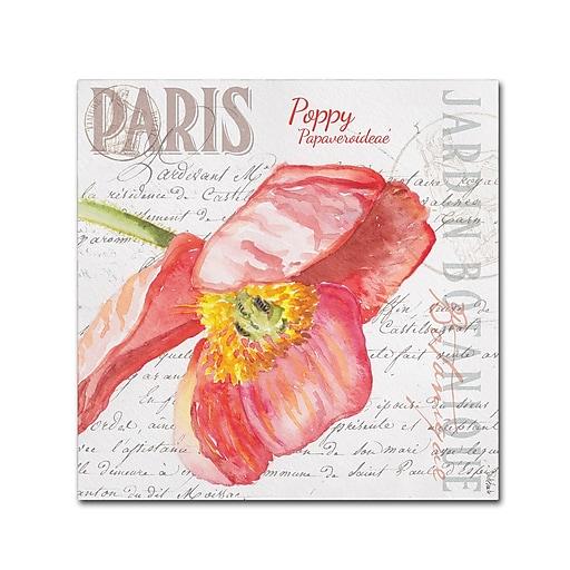 "Trademark Fine Art Jennifer Redstreake 'Paris Botanique Red Poppy' 18"" x 18"" Canvas Stretched (886511944343)"