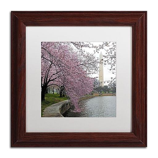 "Trademark Fine Art CATeyes 'Washington Blossoms' 11"" x 11"" Matted Framed (190836099894)"