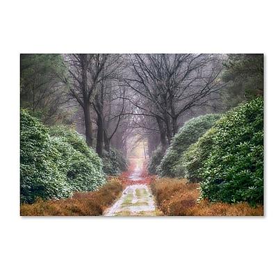 Trademark Fine Art Cora Niele 'Rhododendron Lane' 12
