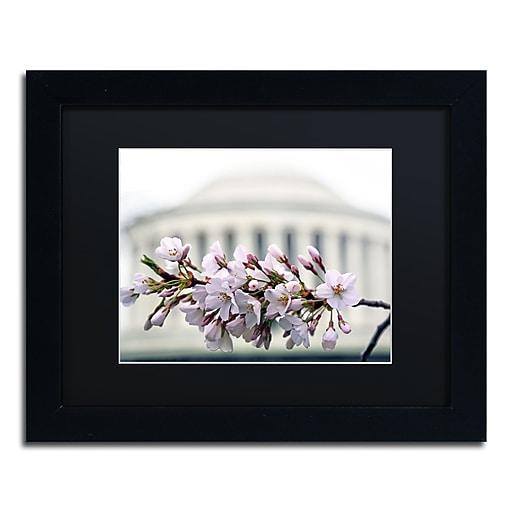 "Trademark Fine Art CATeyes 'Jefferson Memorial Blossoms' 11"" x 14"" Matted Framed (190836098606)"