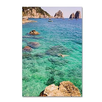 Trademark Fine Art Ariane Moshayedi 'Capri Swimming' 12
