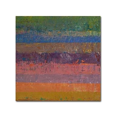 Trademark Fine Art Michelle Calkins 'Pink Line' 18