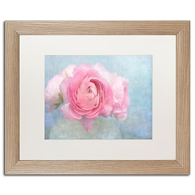 Trademark Fine Art Cora Niele 'Pink Persian Buttercup Still Life' 16