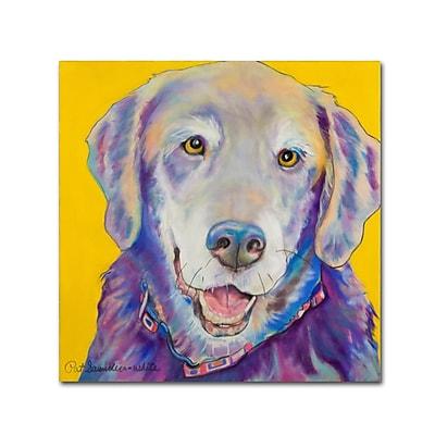Trademark Fine Art Pat Saunders-White 'Willie' 14